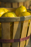 обочина рынка плодоовощ Стоковые Фотографии RF