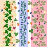 3 обочины основанной на ягодах леса Стоковая Фотография