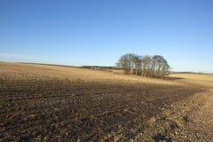Обрабатываемая земля в январе Стоковое Фото