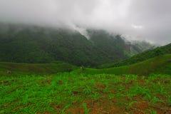 Обрабатываемая земля мозоли на горе в северной Таиланда Стоковое Изображение RF
