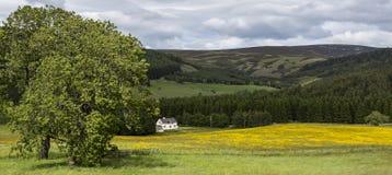 Обрабатываемая земля около замка Corgarff в Aberdeenshire, Шотландии, Великобритании стоковое фото
