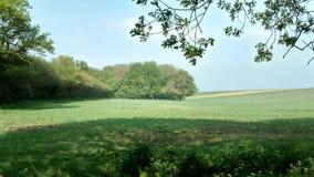 Обрабатываемая земля Англия деревни Peasemore Стоковое Изображение