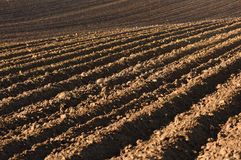 Обрабатываемая земля, вспаханное поле на весне, ландшафте, аграрном, полях Стоковое Изображение RF