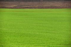 Обрабатываемая земля, вспаханное поле на весне, ландшафте, аграрном, полях Стоковые Изображения