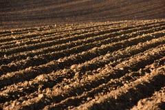 Обрабатываемая земля, вспаханное поле на весне, ландшафте, аграрном, полях Стоковое Изображение