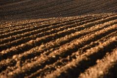 Обрабатываемая земля, вспаханное поле на весне, ландшафте, аграрном, полях Стоковая Фотография RF