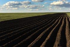 Обрабатываемая земля, вспаханное поле на весне, ландшафте, аграрном, полях Стоковое Фото