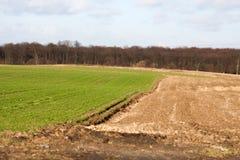 Обрабатываемая земля в последней осени Стоковая Фотография