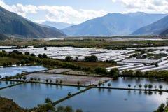 Обрабатываемая земля в плато Тибета стоковые изображения rf