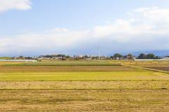 Обрабатываемая земля в Японии Стоковые Фото