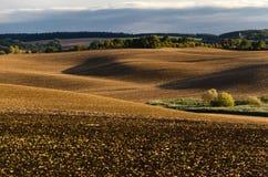 Обрабатываемая земля завальцовки Стоковое Изображение RF