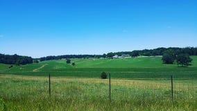 Обрабатываемая земля на зеленых холмах Стоковое Изображение