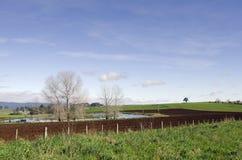 Обрабатываемая земля на северо-западном побережье, Тасмании Стоковые Фотографии RF