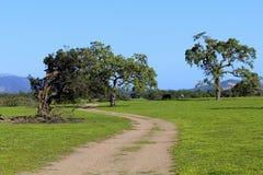 Обрабатываемая земля Lompoc Калифорния ландшафта Стоковое Изображение