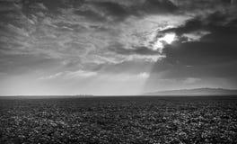 Обрабатываемые земли в стране Пикардии Стоковые Изображения RF