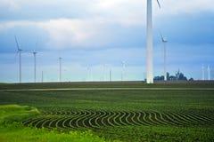 Обрабатываемые земли Миннесоты Стоковое фото RF