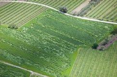Обрабатываемые земли сверху Стоковая Фотография RF