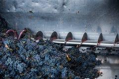 Обрабатывать виноградины на машине стоковое изображение rf