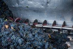 Обрабатывать виноградины на машине стоковая фотография rf