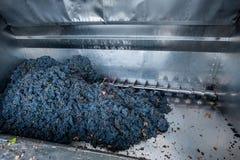 Обрабатывать виноградины на машине стоковые фотографии rf
