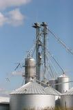 обрабатывать зерна стоковая фотография rf