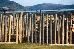 Обрабатывать компании roundwood стоковые фото