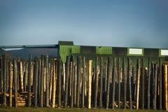 Обрабатывать компании roundwood стоковая фотография