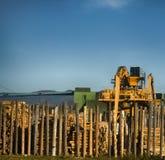 Обрабатывать компании roundwood стоковая фотография rf