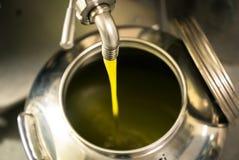 Обрабатывать оливкового масла в современной ферме стоковое изображение