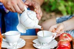 Обрабатывать политый чай стоковые изображения
