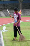 Обрабатывать траву стоковое изображение rf