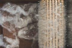 Обрабатывать шерстей стоковое изображение