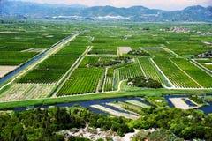 Обрабатывающ землю в Далмации, Хорватия, на адриатическом побережье Стоковое Фото