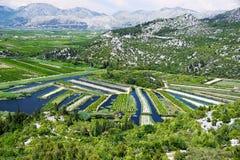 Обрабатывающ землю в Далмации, Хорватия, на адриатическом побережье Стоковое Изображение