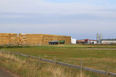 Обрабатывающ землю около KnävÃ¥ngen на Falsterbo, Швеция Стоковая Фотография RF
