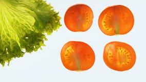 Обработка томатов и салата со светом, проверка качества, обеззараживание сток-видео