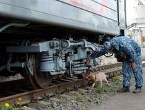 Обработчик контролер-собаки с собакой рассматривает железнодорожный автомобиль Стоковое фото RF