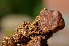 Образец золота Стоковое Изображение RF