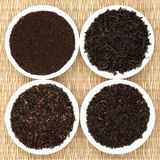 Образец лист чая стоковые изображения
