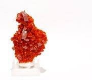 Красный vanadinite стоковая фотография rf