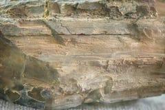 Образец лигнита или бурого угля Лигнит мягкое коричневое combusti стоковые фотографии rf