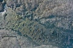 Образование воды Mendenhall замерли ледником, который Стоковые Изображения