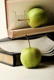 образование принципиальной схемы Стоковое Изображение