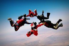 Образование сыгранности Skydiving стоковые фото