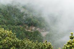 Образование тумана и облака вдоль TF-134 в Тенерифе Стоковое Изображение RF