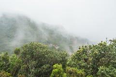 Образование тумана и облака вдоль TF-134 в Тенерифе Стоковые Изображения
