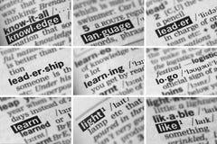Образование уча установленные слова (4 из 8) Стоковая Фотография