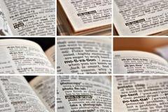 Образование уча установленные слова (5 из 8) Стоковые Изображения RF