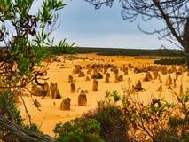 Образования известковой скалы башенк, западная Австралия стоковое фото