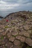 Образования мощёной дорожки гиганта вулканические Стоковая Фотография
